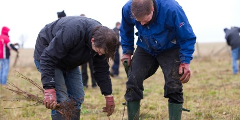 Premier plans to take 200 people to help assist with the tree planting, comprising of a mixture of staff and customers, with the event scheduled to take place on the 24th November at the Woodland Trust-owned Heartwood Forest in Hertfordshire.