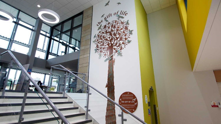 Imageco create impressive Yorkshire Wall Sculpture at Bradford Royal Infirmary.