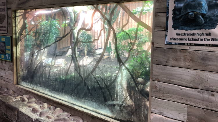 Eco materials from Soyang Europe help Chester Zoo go green.