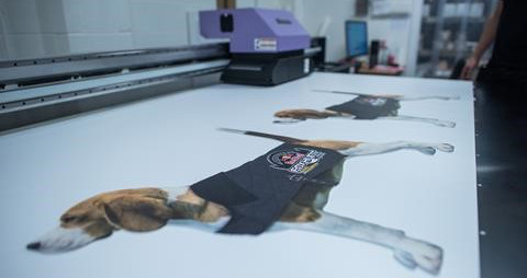 Mimaki beagles LFR